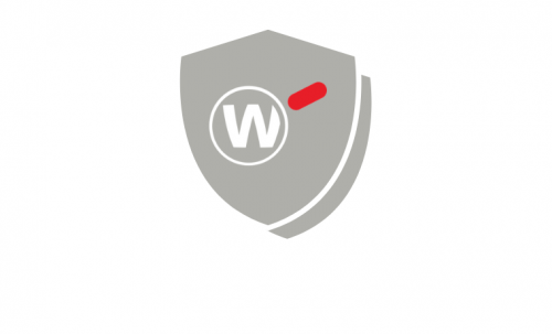WatchGuard Silver Support